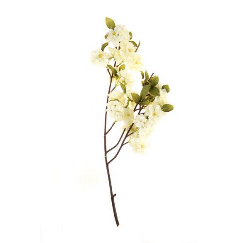 Flor del Durazno Blanco