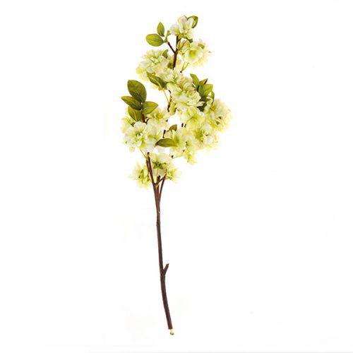 Flor de Durazno Verde