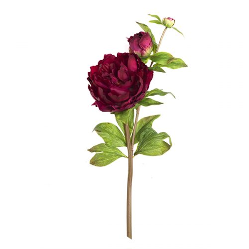 Peonia real touch # 10